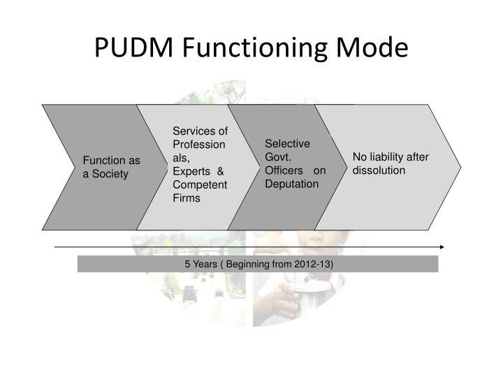 PUDM Functioning Mode