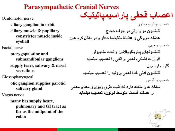 Parasympathetic Cranial Nerves