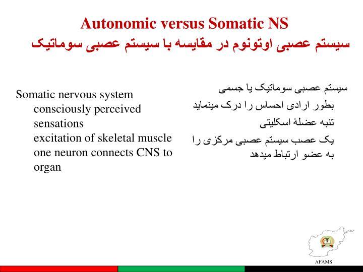 سیستم عصبی اوتونوم در مقایسه با سیستم عصبی سوماتیک