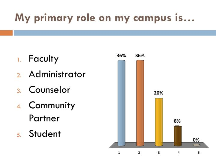 My primary role on my campus is…
