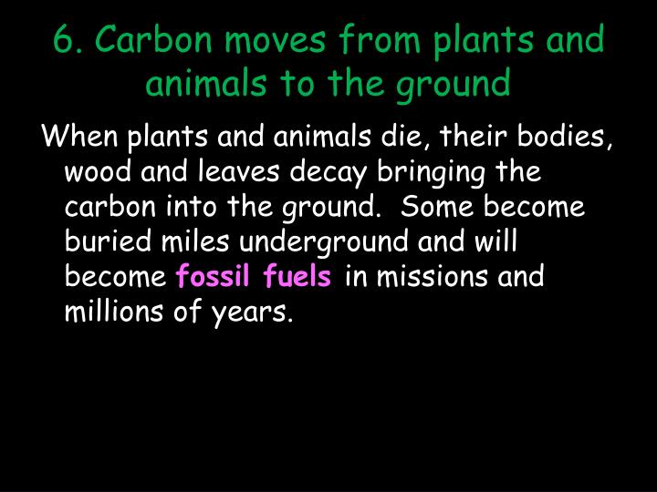 6. Carbon moves from plants and animals to the ground