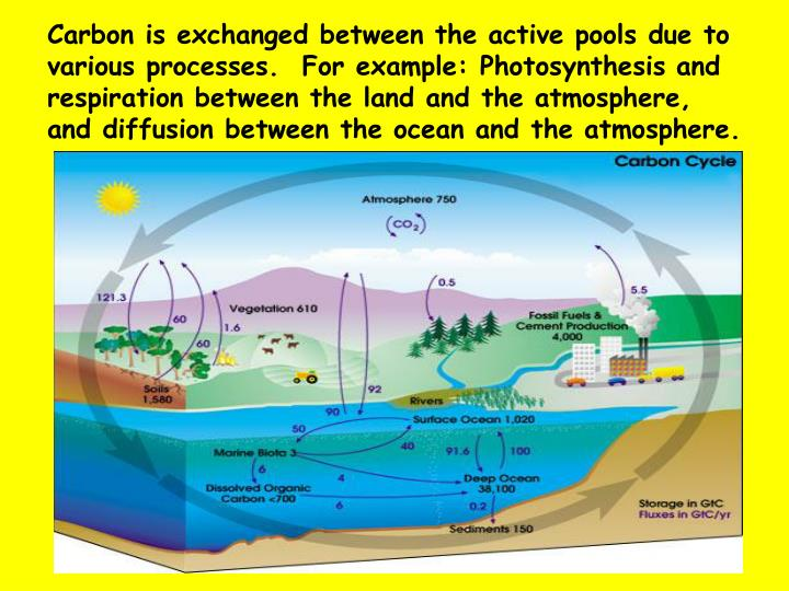 Carbon is exchanged between the active pools due to various processes.  For example: Photosynthesis and respiration between the land and the atmosphere, and diffusion between the ocean and the atmosphere.