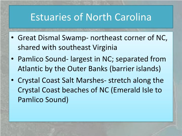 Estuaries of North Carolina