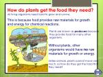 how do plants get the food they need