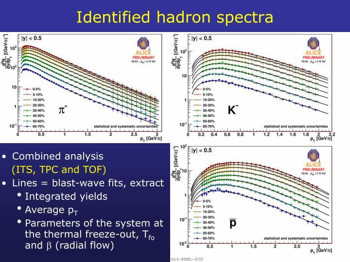 Identified hadron spectra