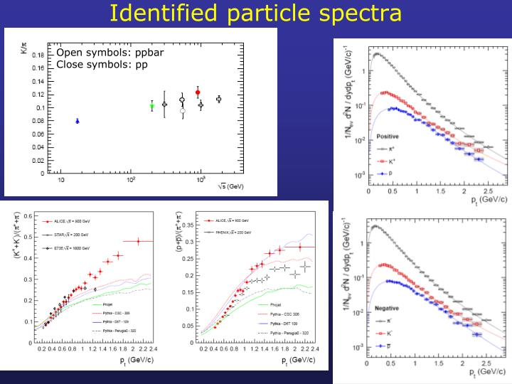Identified particle spectra