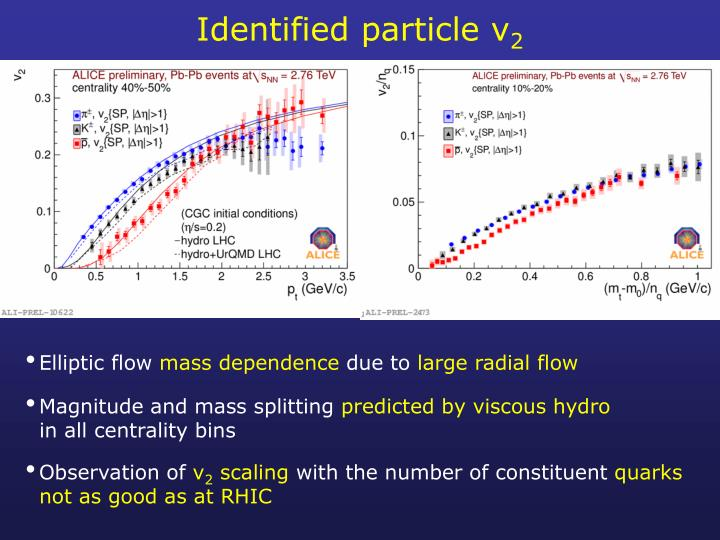 Identified particle v