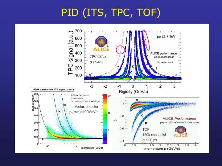 PID (ITS, TPC, TOF)