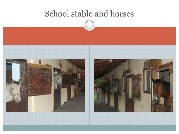 School stable and horses