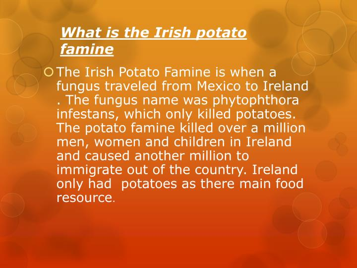 What is the Irish potato famine