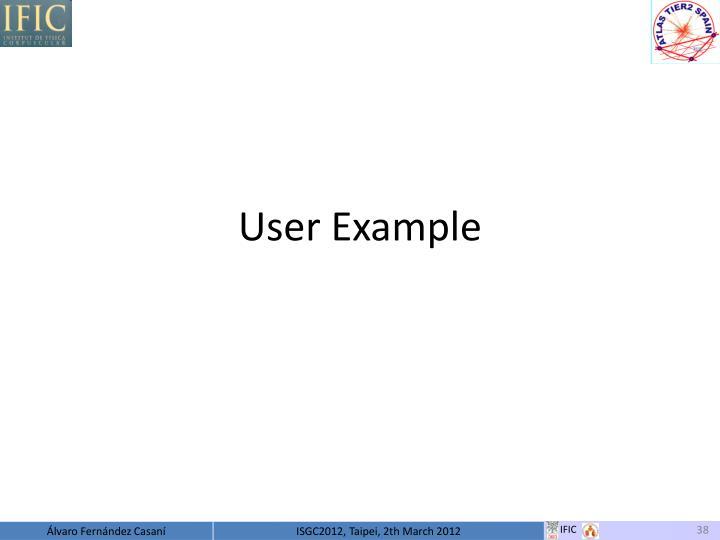 User Example
