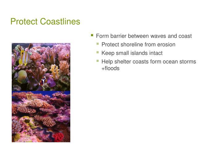 Protect Coastlines