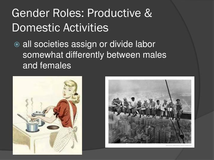 Gender Roles: Productive & Domestic Activities
