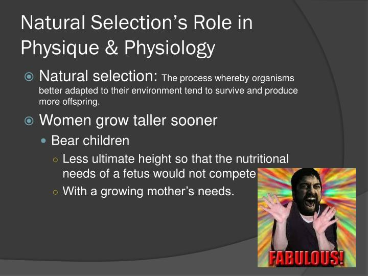 Natural Selection's Role in Physique & Physiology