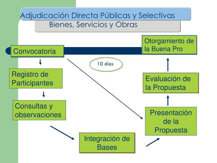 Adjudicación Directa Públicas y Selectivas