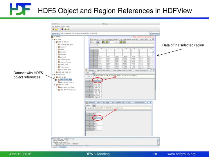 HDF5 Object and Region References in