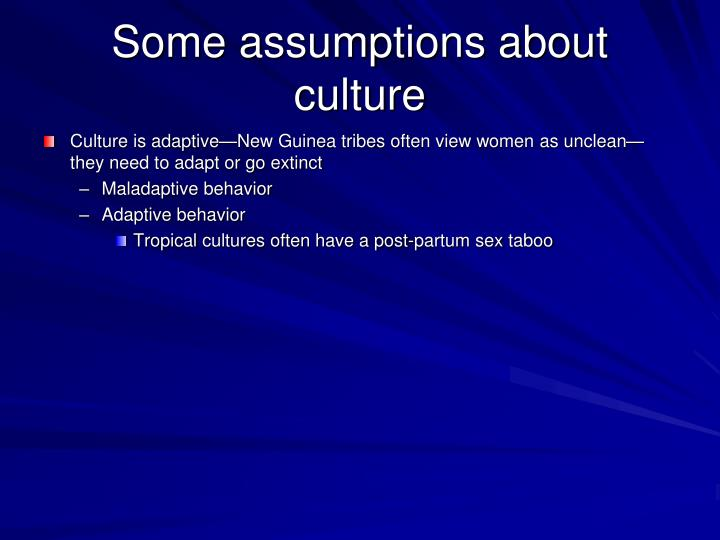 Some assumptions about culture