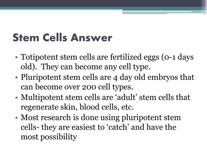 Stem Cells Answer