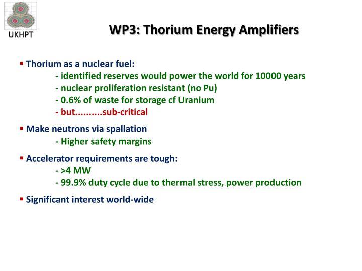 WP3: Thorium Energy Amplifiers