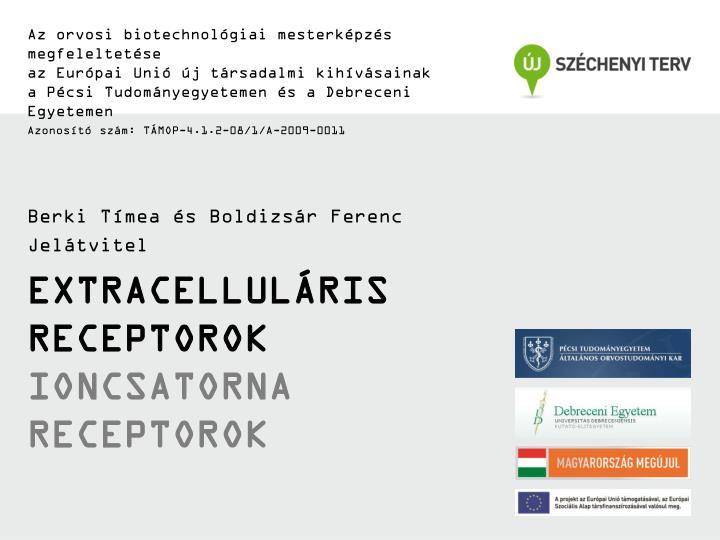 Az orvosi biotechnológiai mesterképzés megfeleltetése
