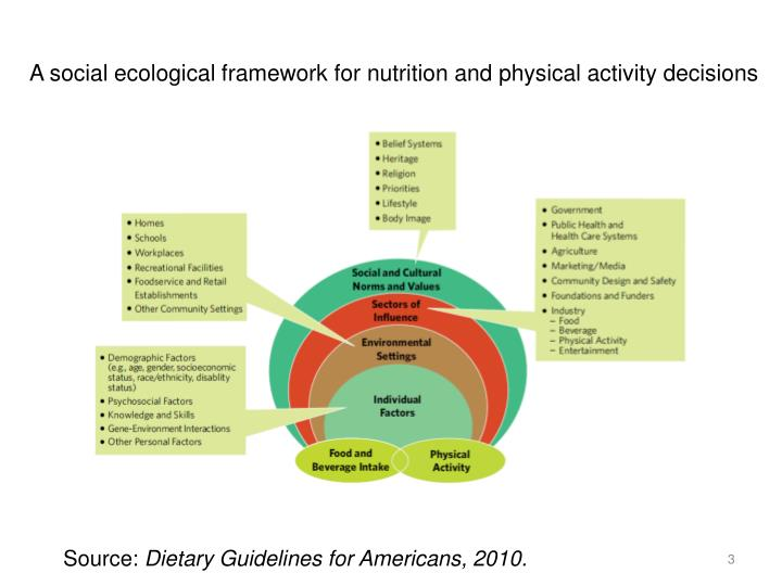 A social ecological framework for nutrition and physical activity decisions