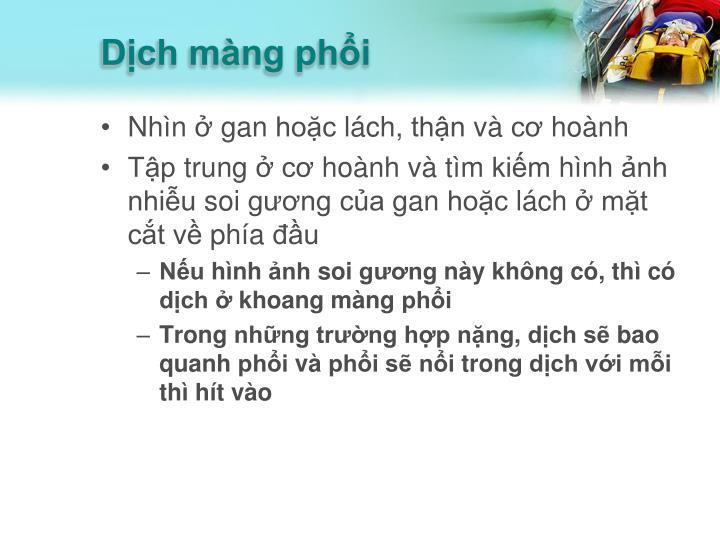 Dịch màng phổi