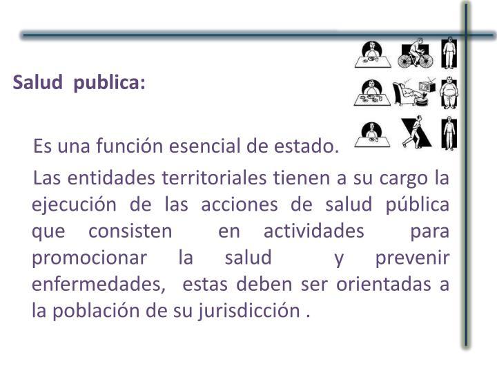 Salud  publica: