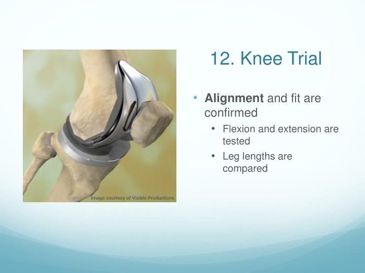 12. Knee Trial