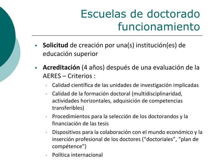 Escuelas de doctorado  funcionamiento