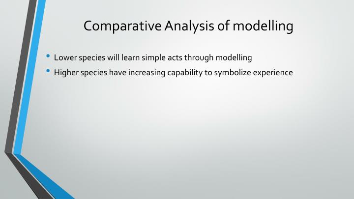 Comparative Analysis 0f modelling
