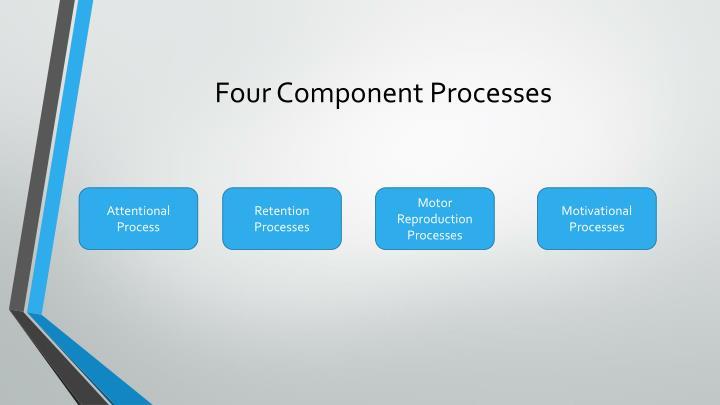 Four Component Processes