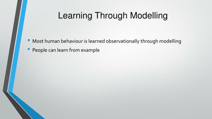 Learning Through Modelling