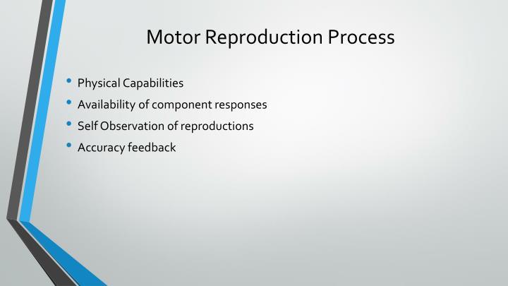 Motor Reproduction Process
