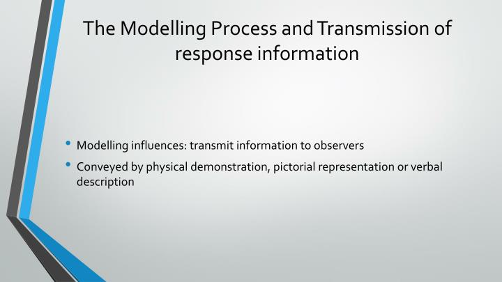 The Modelling Process and Transmission of response information