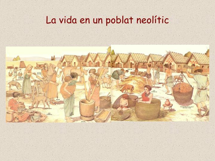 La vida en un poblat neolític