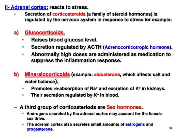 II- Adrenal cortex: