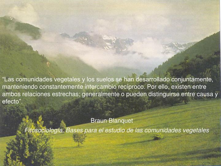 """""""Las comunidades vegetales y los suelos se han desarrollado conjuntamente, manteniendo constantemente intercambio recíproco. Por ello, existen entre ambos relaciones estrechas; generalmente o pueden distinguirse entre causa y efecto""""."""