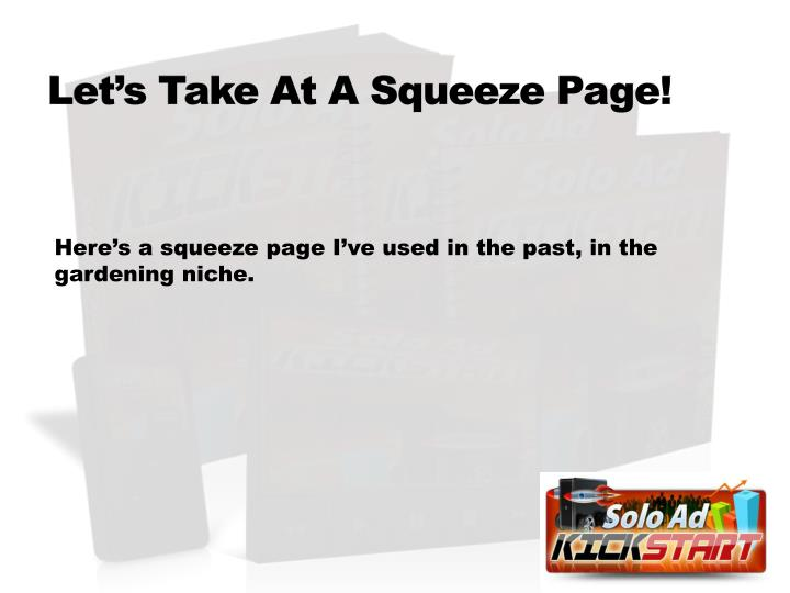 Let's Take At A Squeeze Page!