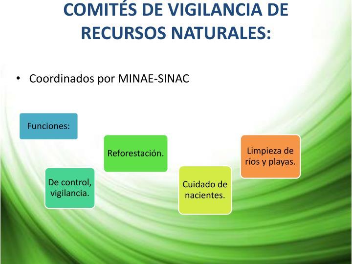 COMITÉS DE VIGILANCIA DE RECURSOS NATURALES:
