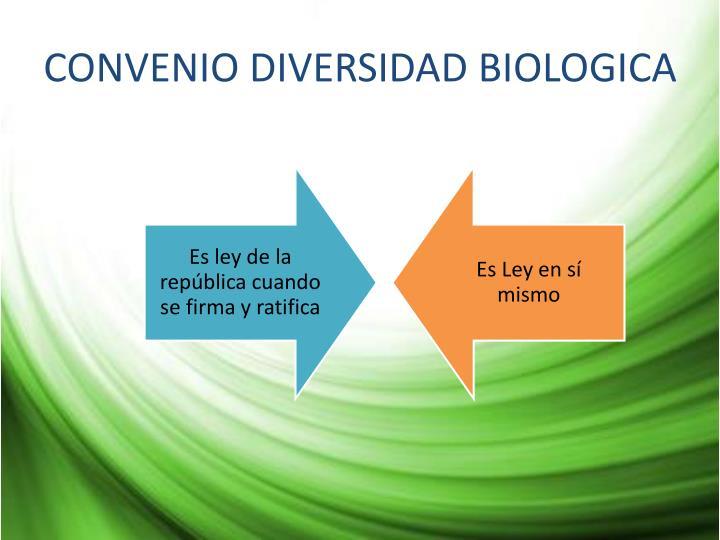 CONVENIO DIVERSIDAD BIOLOGICA