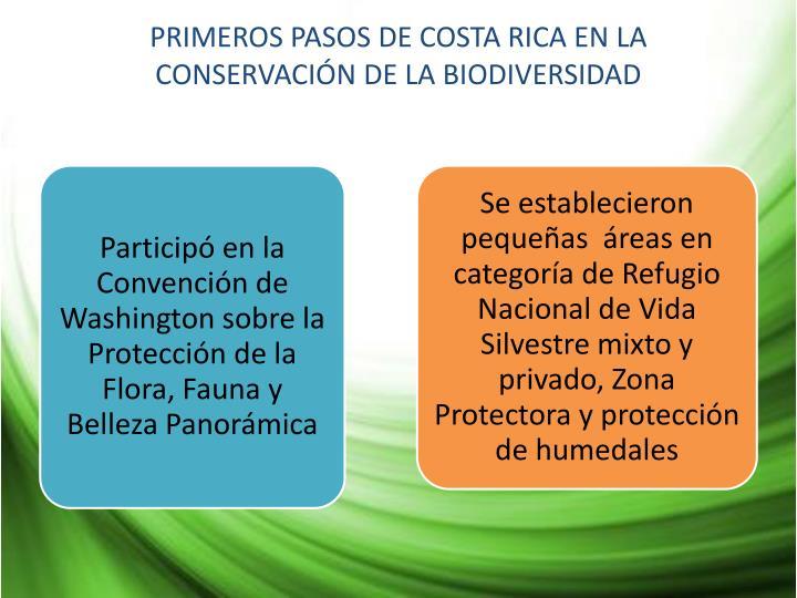 PRIMEROS PASOS DE COSTA RICA EN LA CONSERVACIÓN DE LA BIODIVERSIDAD
