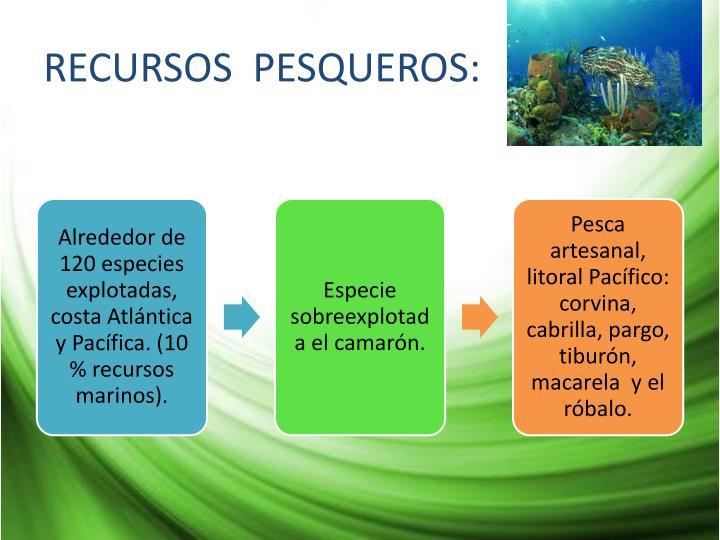 RECURSOS  PESQUEROS: