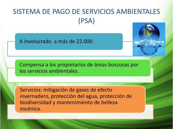 SISTEMA DE PAGO DE SERVICIOS AMBIENTALES (PSA)