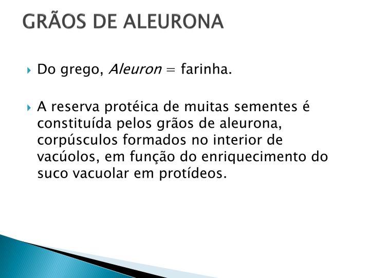 GRÃOS DE ALEURONA