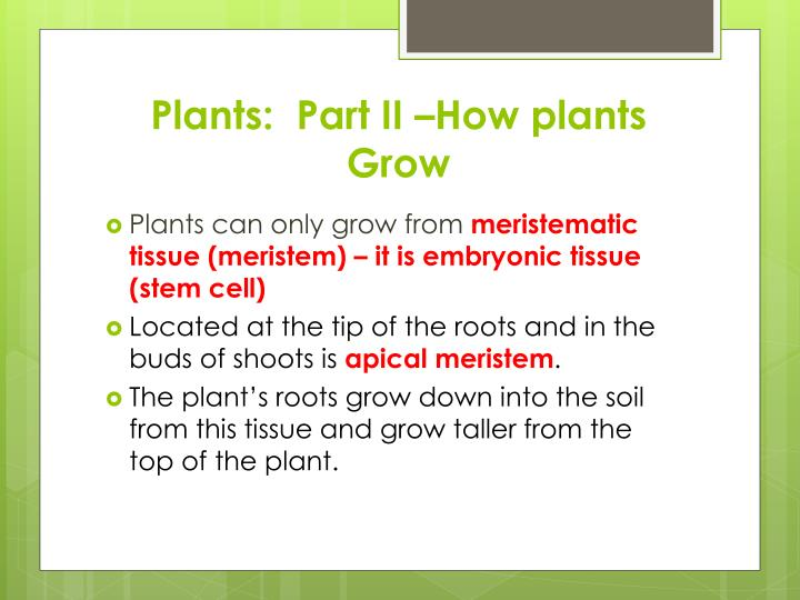 Plants:  Part II –How plants Grow
