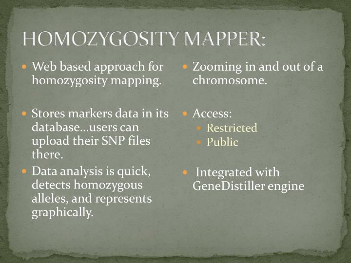 HOMOZYGOSITY MAPPER: