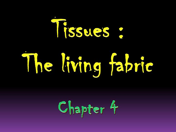 Tissues the living fabric chapter 4