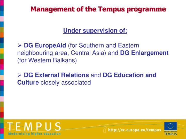 Management of the Tempus programme