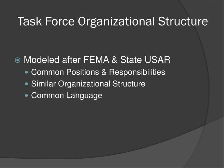 Task Force Organizational Structure