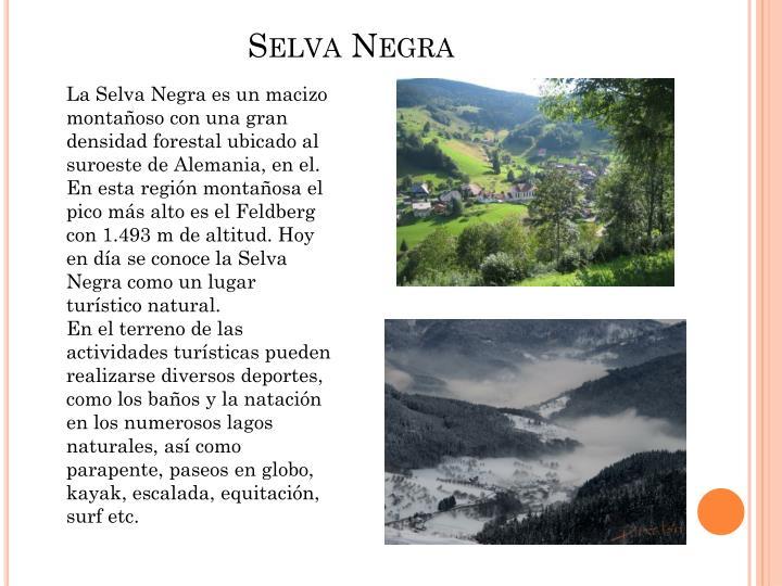 Selva Negra